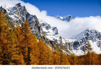 Autumn trees at snowy mountains. Snowy mountain peaks. Autumn trees snow mountain peak. Snow covered mountain peak view - Shutterstock ID 1919276213