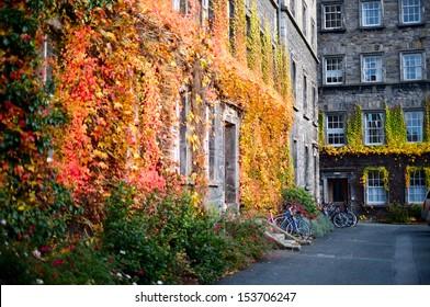 Autumn at the Trinity college, Dublin, Ireland.