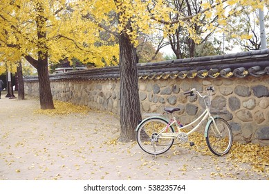Autumn, Under roof bicycle - (traditional Korean style)