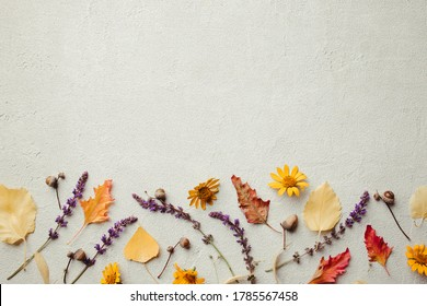 Autumn vibes. Template made of dried leaves and flowers on stone background. Seasonal background, fall concept, thanksgiving day composition. Flat lay, copy space