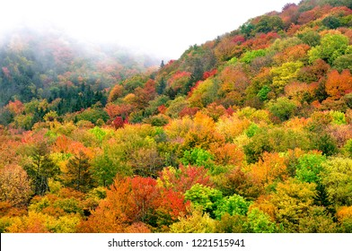 Autumn view along the Highland Scenic Highway, Route 150, National Scenic Byway, Pocahontas County, West Virginia, USA