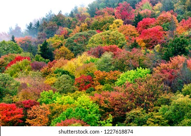 Autumn view along the Highland Scenic Highway, National Scenic Byway, Pocahontas County, West Virginia, USA