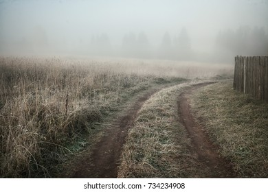 autumn view of the country road in the fog