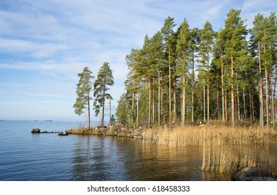 Autumn view of the lake Paijanne, the trees on the shore in Finland.