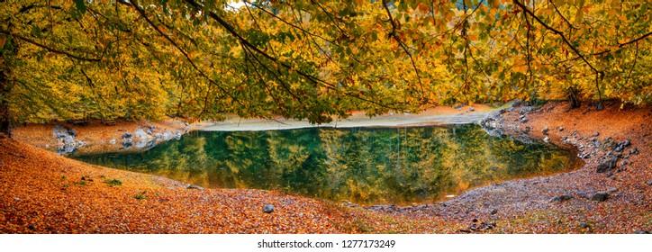 an autumn view of a lake in Yedigoller, Bolu
