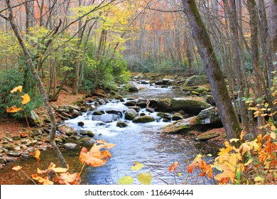Autumn view of Little River from hiking trail near Elkmont trail head in Smoky Mountains National Park, Tennessee.