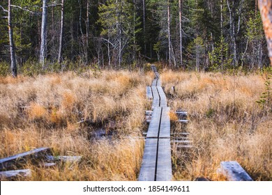 Autumn view of Oulanka National Park, landscape, a finnish national park in the Northern Ostrobothnia and Lapland regions of Finland,  wooden wilderness hut, cabin cottage, bridge, campground place - Shutterstock ID 1854149611