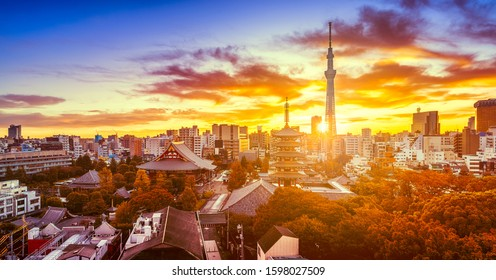 Autumn view of Senso-ji Temple and skytree with dramatic sky at dawn in Tokyo, Japan