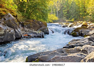 Autumn view of the Skutz Falls at Cowichan River National Park, Vancouver Island, British Columbia, Canada.