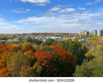 Autumn Views of London Ontario