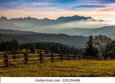 Autumn views. Meadow trees and hills
