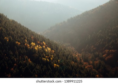 Autumn views of the valley in the vicinity of Ilsenburg, Harz