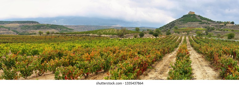 Autumn Vineyards and Davalillo castle, La Rioja (Spain)