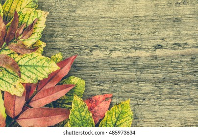Autumn wallpaper, fall leaves frame on wooden background