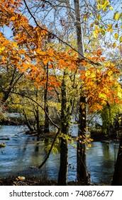 Autumn in Washington DC