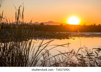 Autumn wetlands at sunrise