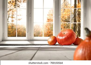 Autumn white kitchen with big orange pumpkin