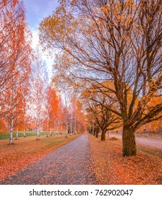 Autumn wiew from Iisalmi, Finland.