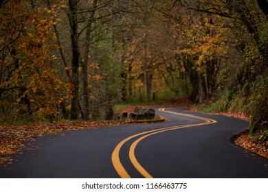 Autumn winding road along the Columbia River Gorge historic highway with leaves alongside