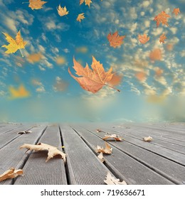 autumn winter background leaves wind weather planks
