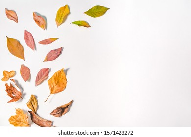 Autumn or Winter composition. dried autumn leaves, and cinnamon. Flat lay, top view.