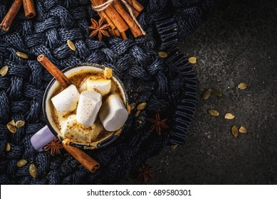 Autumn and winter hot drinks. Ideas for Christmas, Thanksgiving, Halloween. Cup with hot spicy pumpkin white chocolate, with marshmallow and cinnamon, anise. Cozy, with knitted plaid. Copy space above