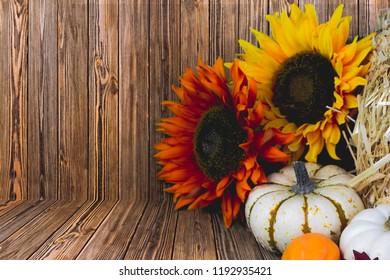 Autumn Wood Flower Background