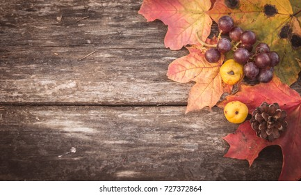 autumn wooden background with red maple leaves, quince, grapes and a bump top view