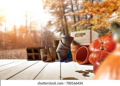 Autumn wooden table in a beautiful golden forest