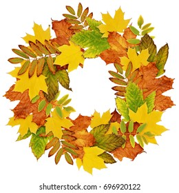 Autumn wreath from dry colored leaves isolated on white background. Flat lay.