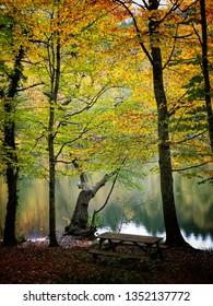 Autumn at Yedigoller National park