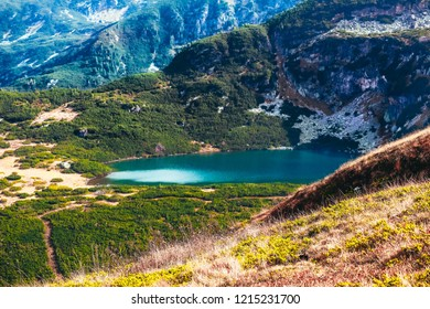 Autumn yellow alpine landscape, clean water in the alpine lake. Rocky mountains, colorful fall season.