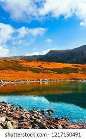 Autumn yellow alpine landscape, clean water in the alpine lake. Rocky mountain peak, fall season, scenic view.