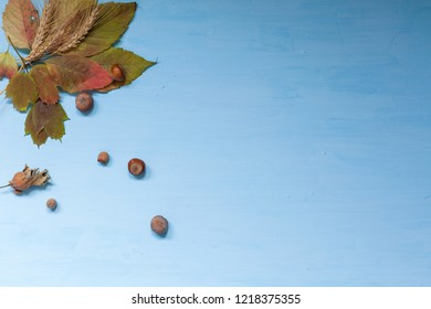 autumn yellow leaves fruit nuts on the table