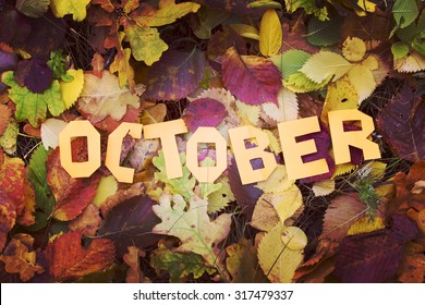 Autumn, yellow leaves, the word October