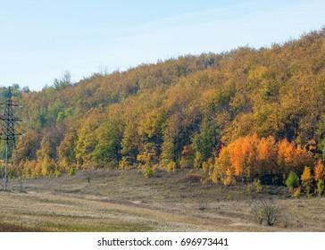 autumn yellow trees foothills. Autumn landscape in foothills.