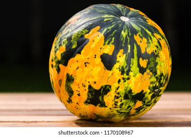 Autumn yellow-green pumpkin in the design of the globe