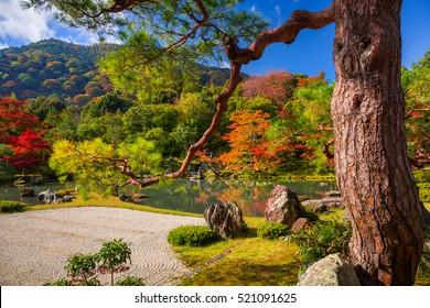 Autumn at zen garden of the tenryu-ji temple in Arashiyama, Japan.