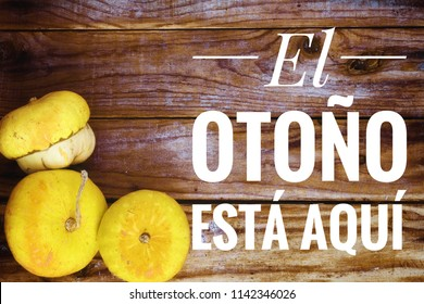 Autumnal background with pumpkins on old wooden table with the text 'autumn is here' written in Spanish