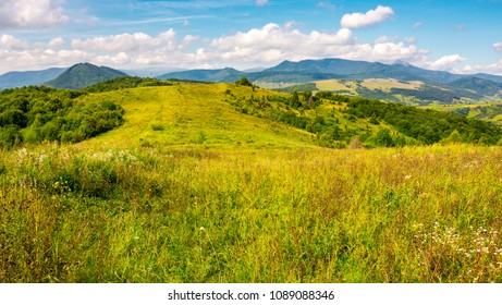 autumnal countryside of Carpathian mountains. grassy meadow and magnificent Pikui peak of Carpathian dividing ridge in the distance. lovely nature scenery with some cloudy formations