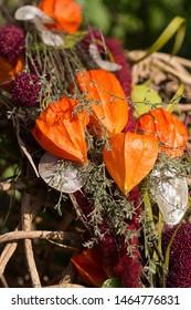 Autumnal decoration with Chinese lantern plant (Physalis alkekengi)