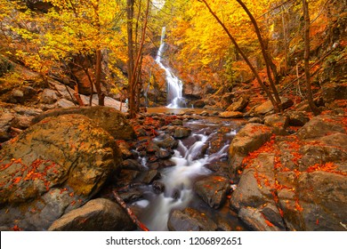 Autumnal forest, rocks covered with moss, fallen leaves. Mountain river with waterfalls at autumn times. Erikli waterfalls, Yalova, Turkey.