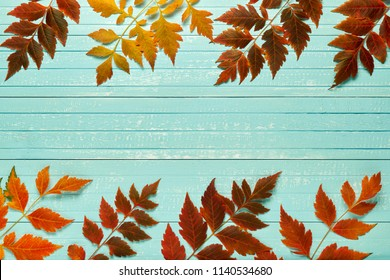 Autumnal frame for your idea. In autumn fallen dry twigs with leaves of yellow, red, orange, aligned on the perimeter of the frame on an old wooden board of a soft blue place for your text