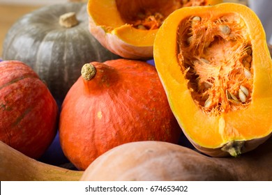 Autumnal harvest of ripened yellow, orange, green pumkins full and cut