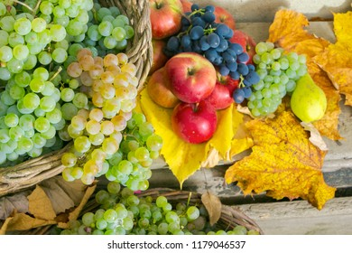 autumnal harvest still life with apples, pears, grapes, nuts and berries in foliage on wooden board. horizontal