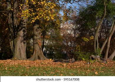 Autumnal impressions from Berlin, Germany