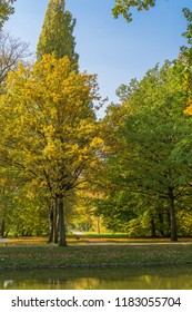 Autumnal impressions in a park, the Karlsaue in Kassel, Germany