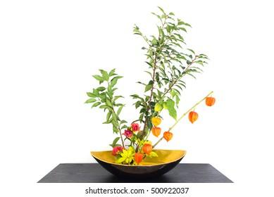 Autumnal japanese flower arrangement (ikebana) with physalis