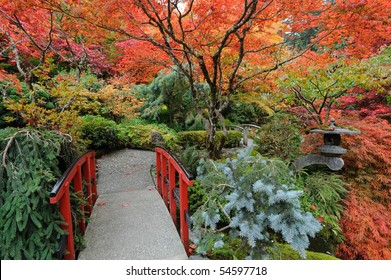 The autumnal japanese garden in victoria, vancouver island, british columbia, canada