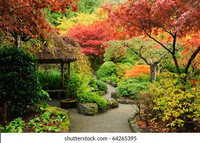 autumnal japanese garden in victoria, vancouver island, british columbia, canada
